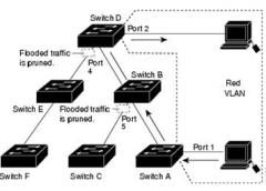 Tìm hiểu về Cisco VTP – VLAN Trunking Protocol